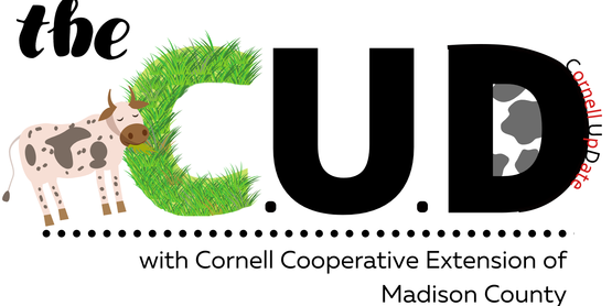 The C.U.D. newsletter