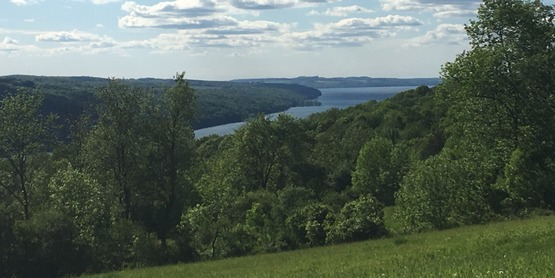 Hinchcliff Family Preserve next to Skaneateles Lake