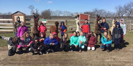 kids with llamas
