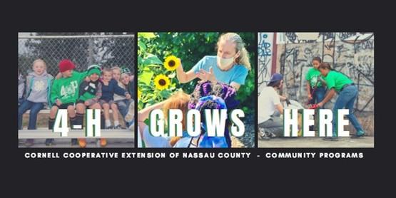 community program edited