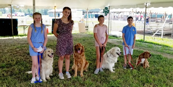 Youth show their dogs at the Orange County 4-H Showcase.