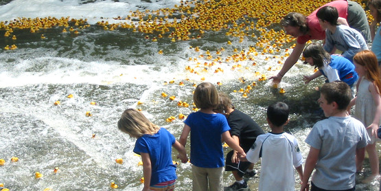 2008 4-H Rubber Duck Race, Ithaca NY