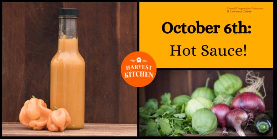 hot sauce class poster