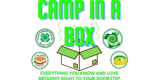 camp in box 3