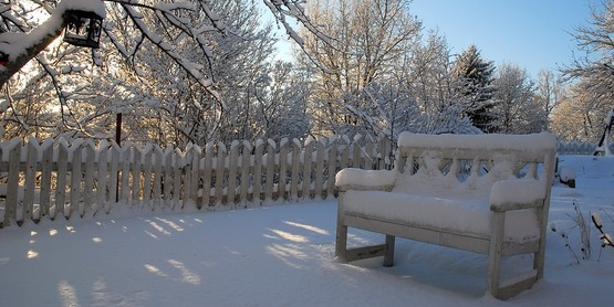 Winter garden with a bench. The ground and bench are covered in snow.
