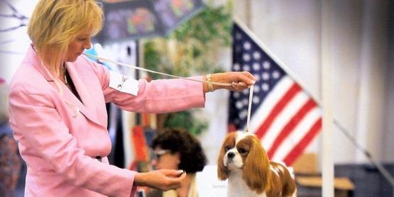 Fran Hellman showing her dog, Joy.