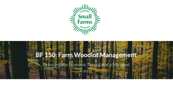 Farm Woodlot
