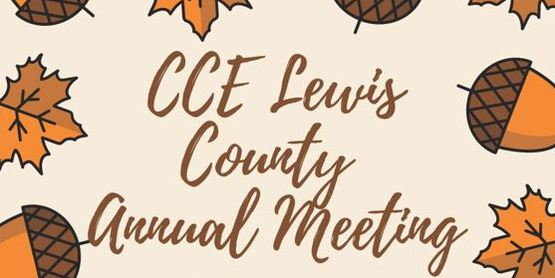 CCE Lewis Annual Meeting 2020