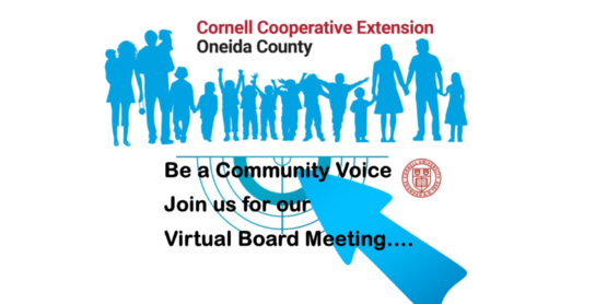 Join us for our virtual Board Of Directors meetings