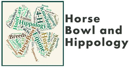 4-H Horse Bowl Practice