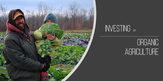 Nourish Tompkins invests in organic agriculture