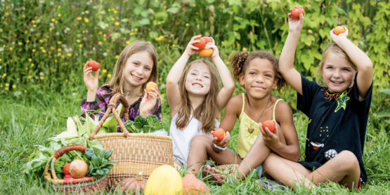 Healthy Food For All