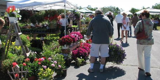 Herb & Flower Festival