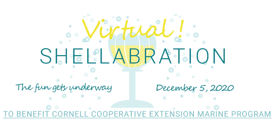 virtual shellabration 2020