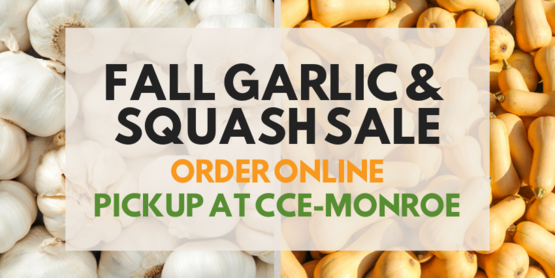 garlic and squash sale