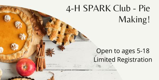 SPARK Club: Pie