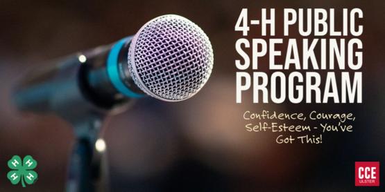 public speaking presentations