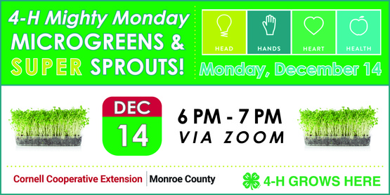 December 4-H Mighty Monday banner