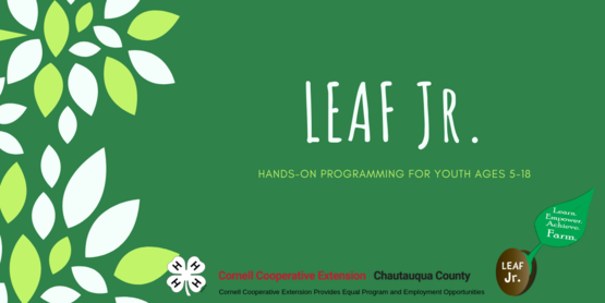 LEAF Jr. Header