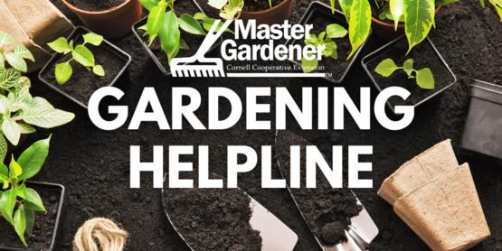 Gardening Helpline