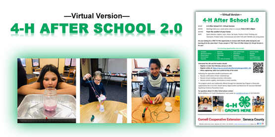 4H After School Program 2021