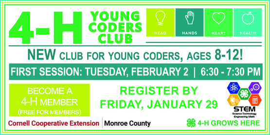 Young Coders banner