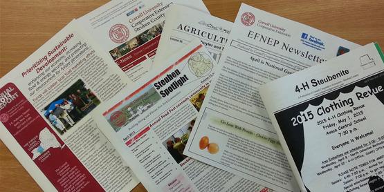 Steuben publications
