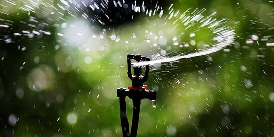 Sprinkler head of impact sprinkler that uses for sprinkler irrigation.