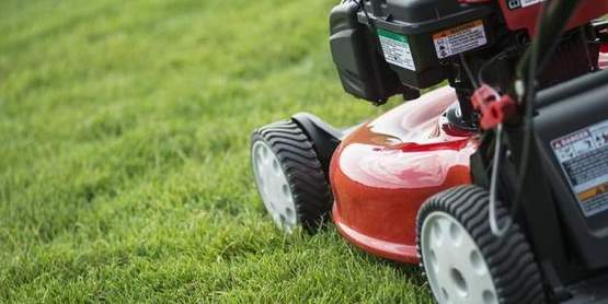 Your lawn will do best if maintained at a height of 3 inches.