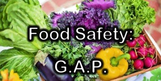 "Fruits and vegetables ""Food Safety: GAP"" written on top."