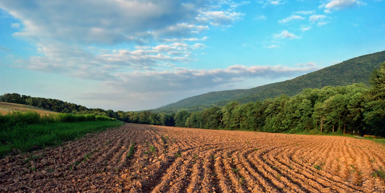 tilled farm field at dusk.