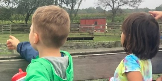 young boy and girl enjoying a wagon ride while looking at the animals on the farm