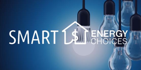 Smart Energy Choices, light bulbs