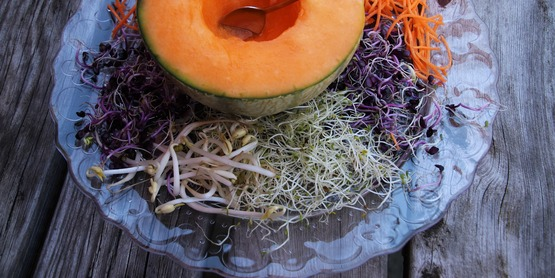 Melon and sprouts