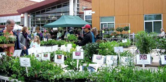 2017 Master Gardener Spring Garden Fair and Plant Sale, Ithaca NY