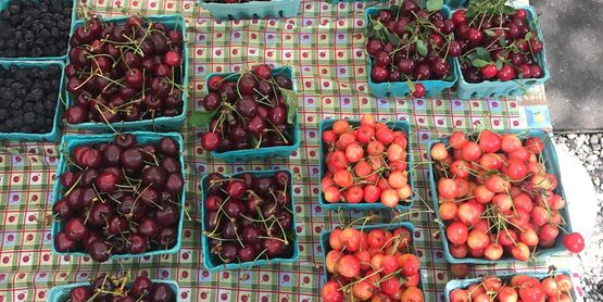 locally grown berries