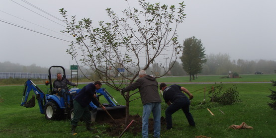 Planting trees in PFS Gardens