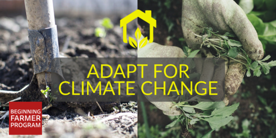 adapt for climate change