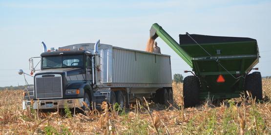 Farm Semi Truck
