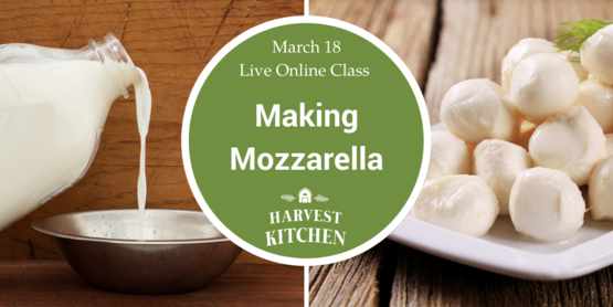 event banner for mozzarella making workshop