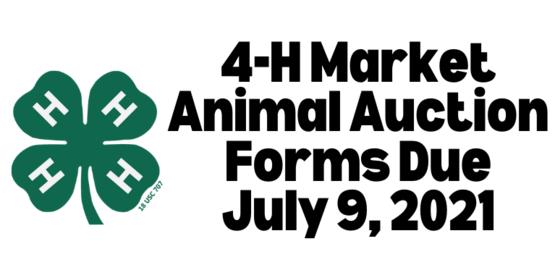 4H Auction Forms due