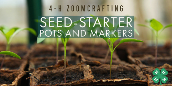 Seed-Starter Pots and Markers