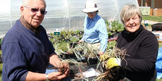Master Gardener Volunteers potting plants at Dutchess County Farm & Home Center.