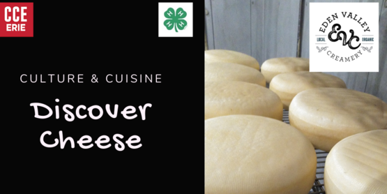 culture & Cuisine: Discover Cheese