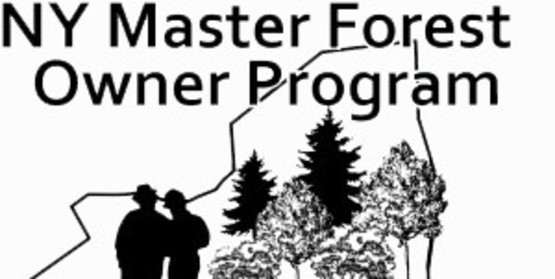 NY Master Forest Owner Logo.