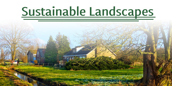 Sustainable Landscapes Series