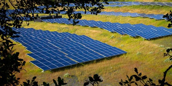 solar farm; rows of solar panels on a hill side