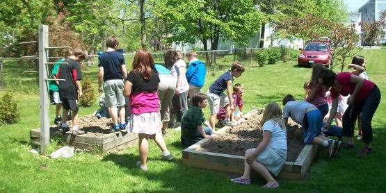 community and school gardens