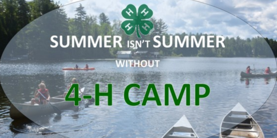 4-H Camp Overlook Scholarships Available