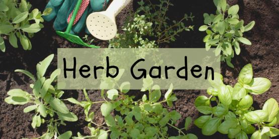 Herb Garden banner